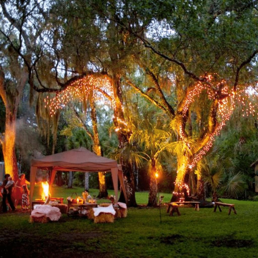 Midsummer Night's Dream Bar Mitzvah party